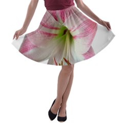 Flower Blossom Bloom Amaryllis A Line Skater Skirt