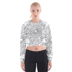 Scrapbook Side Lace Tag Element Cropped Sweatshirt