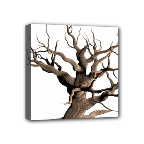 Tree Isolated Dead Plant Weathered Mini Canvas 4  x 4