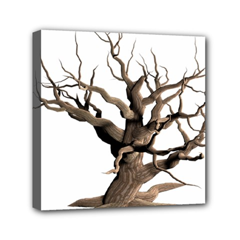 Tree Isolated Dead Plant Weathered Mini Canvas 6  X 6