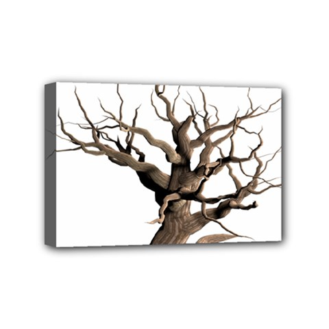 Tree Isolated Dead Plant Weathered Mini Canvas 6  X 4