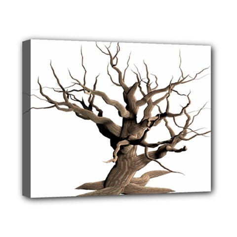 Tree Isolated Dead Plant Weathered Canvas 10  X 8