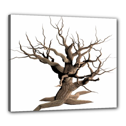 Tree Isolated Dead Plant Weathered Canvas 24  x 20