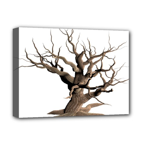 Tree Isolated Dead Plant Weathered Deluxe Canvas 16  X 12