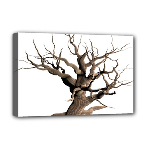 Tree Isolated Dead Plant Weathered Deluxe Canvas 18  x 12