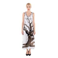 Tree Isolated Dead Plant Weathered Sleeveless Maxi Dress