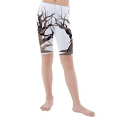 Tree Isolated Dead Plant Weathered Kids  Mid Length Swim Shorts