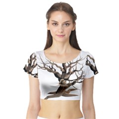 Tree Isolated Dead Plant Weathered Short Sleeve Crop Top (Tight Fit)