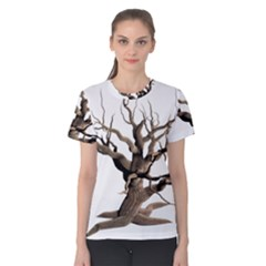 Tree Isolated Dead Plant Weathered Women s Cotton Tee