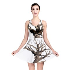 Tree Isolated Dead Plant Weathered Reversible Skater Dress