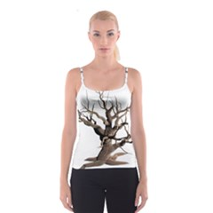 Tree Isolated Dead Plant Weathered Spaghetti Strap Top