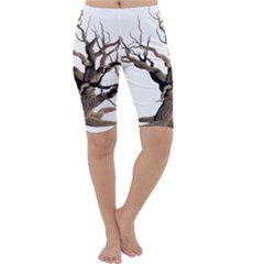 Tree Isolated Dead Plant Weathered Cropped Leggings