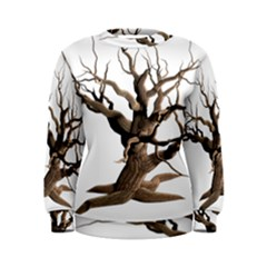 Tree Isolated Dead Plant Weathered Women s Sweatshirt