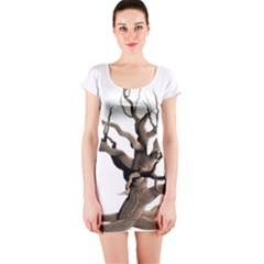 Tree Isolated Dead Plant Weathered Short Sleeve Bodycon Dress