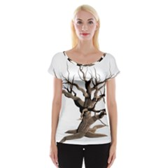 Tree Isolated Dead Plant Weathered Women s Cap Sleeve Top
