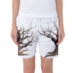 Tree Isolated Dead Plant Weathered Women s Basketball Shorts