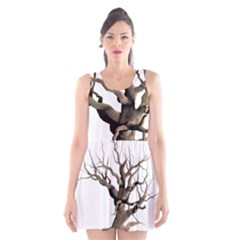 Tree Isolated Dead Plant Weathered Scoop Neck Skater Dress