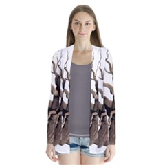 Tree Isolated Dead Plant Weathered Cardigans