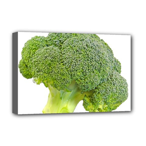 Broccoli Bunch Floret Fresh Food Deluxe Canvas 18  X 12