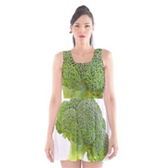 Broccoli Bunch Floret Fresh Food Scoop Neck Skater Dress