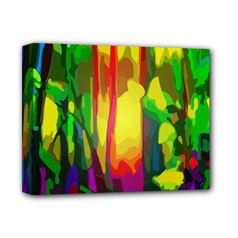 Abstract Vibrant Colour Botany Deluxe Canvas 14  X 11