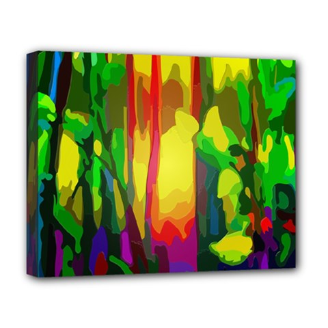 Abstract Vibrant Colour Botany Deluxe Canvas 20  x 16