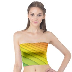Abstract Pattern Lines Wave Tube Top