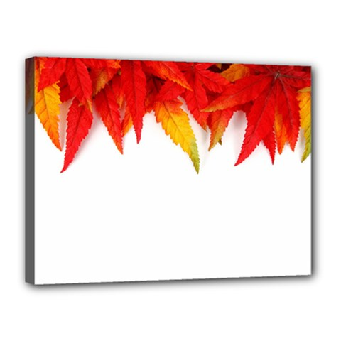 Abstract Autumn Background Bright Canvas 16  x 12