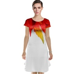 Abstract Autumn Background Bright Cap Sleeve Nightdress