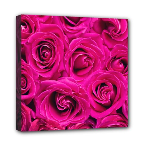Pink Roses Roses Background Mini Canvas 8  X 8