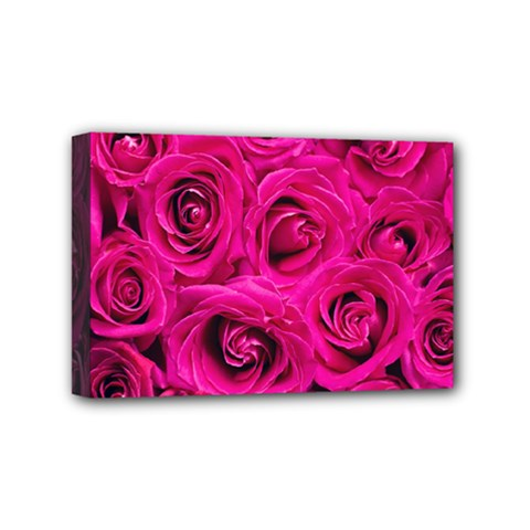 Pink Roses Roses Background Mini Canvas 6  x 4