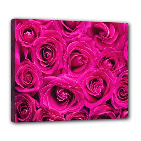 Pink Roses Roses Background Deluxe Canvas 24  x 20