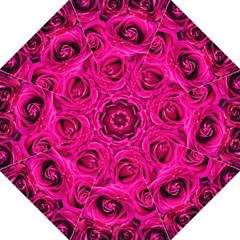 Pink Roses Roses Background Hook Handle Umbrellas (Large)