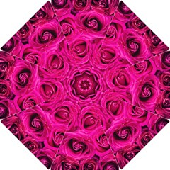 Pink Roses Roses Background Hook Handle Umbrellas (Small)