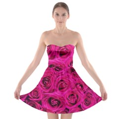 Pink Roses Roses Background Strapless Bra Top Dress