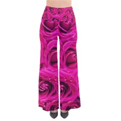 Pink Roses Roses Background Pants