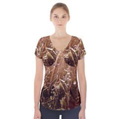 Pink Roses Roses Background Short Sleeve Front Detail Top