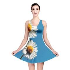 Daisy On Blue Reversible Skater Dress