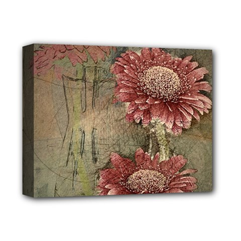 Flowers Plant Red Drawing Art Deluxe Canvas 14  X 11