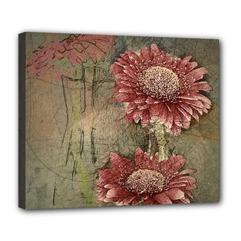 Flowers Plant Red Drawing Art Deluxe Canvas 24  X 20