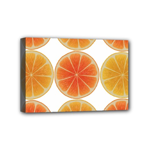 Orange Discs Orange Slices Fruit Mini Canvas 6  x 4