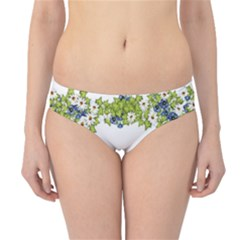 Birthday Card Flowers Daisies Ivy Hipster Bikini Bottoms