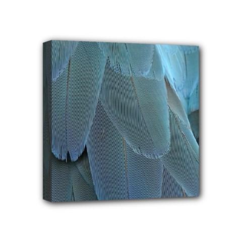 Feather Plumage Blue Parrot Mini Canvas 4  x 4