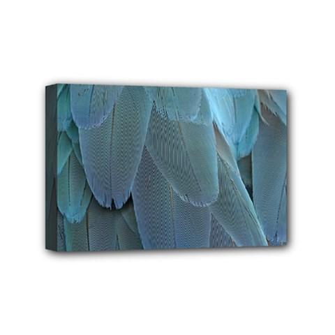 Feather Plumage Blue Parrot Mini Canvas 6  X 4
