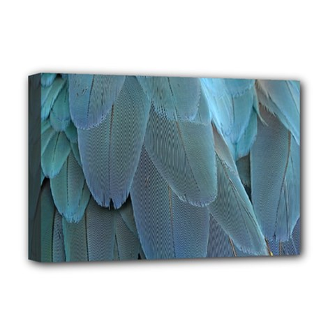 Feather Plumage Blue Parrot Deluxe Canvas 18  X 12