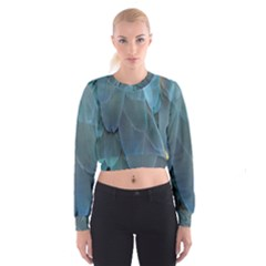 Feather Plumage Blue Parrot Cropped Sweatshirt