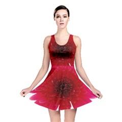 Flower Isolated Transparent Blossom Reversible Skater Dress