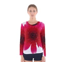 Flower Isolated Transparent Blossom Women s Long Sleeve Tee