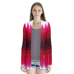 Flower Isolated Transparent Blossom Cardigans