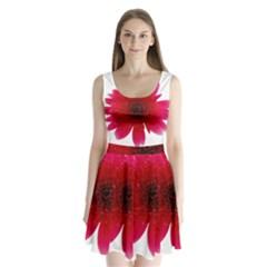 Flower Isolated Transparent Blossom Split Back Mini Dress